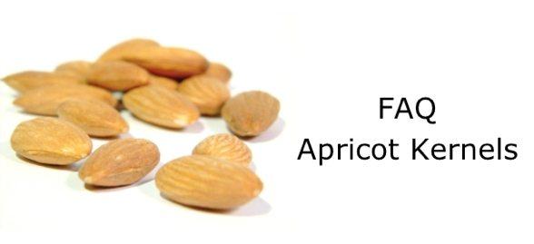 Apricot Kernels – FAQs